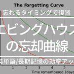 【英単語/長期記憶のコツ】エビングハウスの忘却曲線で復習のタイミングを管理