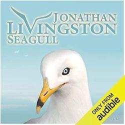 初心者におすすめのAudible(オーディブル)Jonathan Livingston Seagullかもめのジョナサン