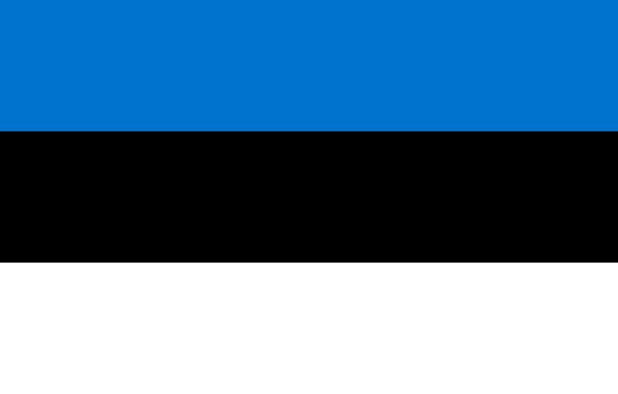 エストニアの働き方:IT先進国の効率的な仕事とプライベートの尊重【海外の働き方】